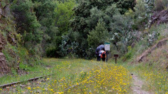 Visitantes en el primer día de apertura del Camino de Hierro