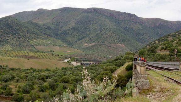 Puente de las Almas